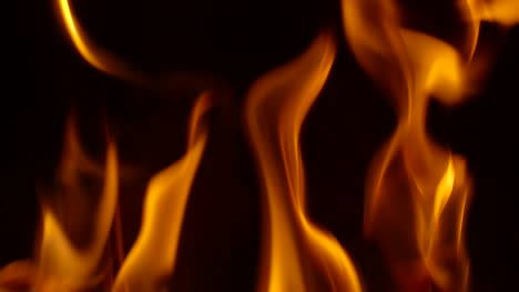 Fire-Background-Loop-2