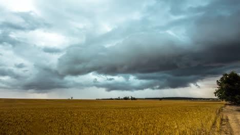 Goomalling-storm