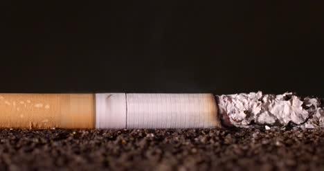 Burning-Cigarette-Timelapse