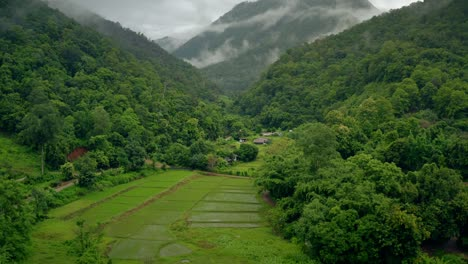 Lush-Green-Valley-Thailand