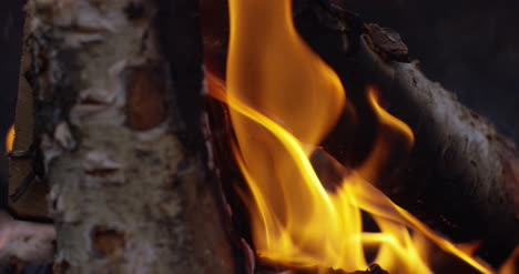 Burning-Logs-Slow-Motion-4K-07