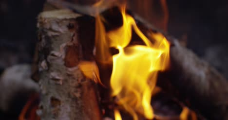 Burning-Logs-Slow-Motion-4K-10